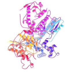 使用细菌表达系统进行蛋白表达和纯化